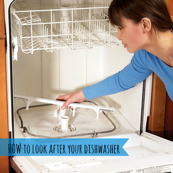 how to look after your dishwasher how to load your dishwasher
