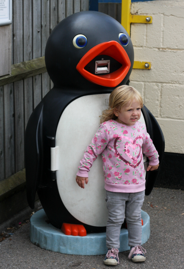 Saturday is caption day - Amy meets the penguins