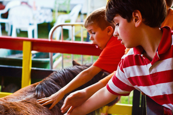 petting zoo ideas for kids parties