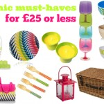 Picnic must-haves for £25 or less