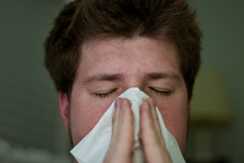 how to get rid of nasty bugs and fight a cold