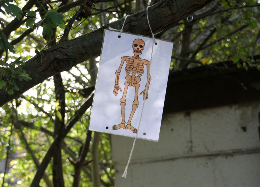 skeleton trail at windmill hill city farm