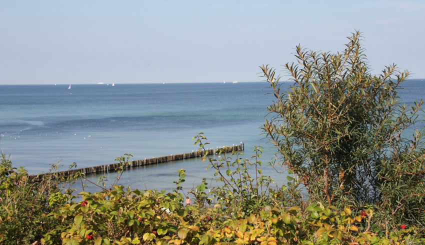 baltic-sea-in-autumn-gespensterwald-nienhagen