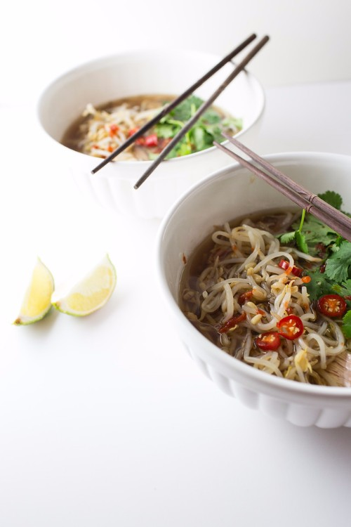 slow cooker recipes beef pho