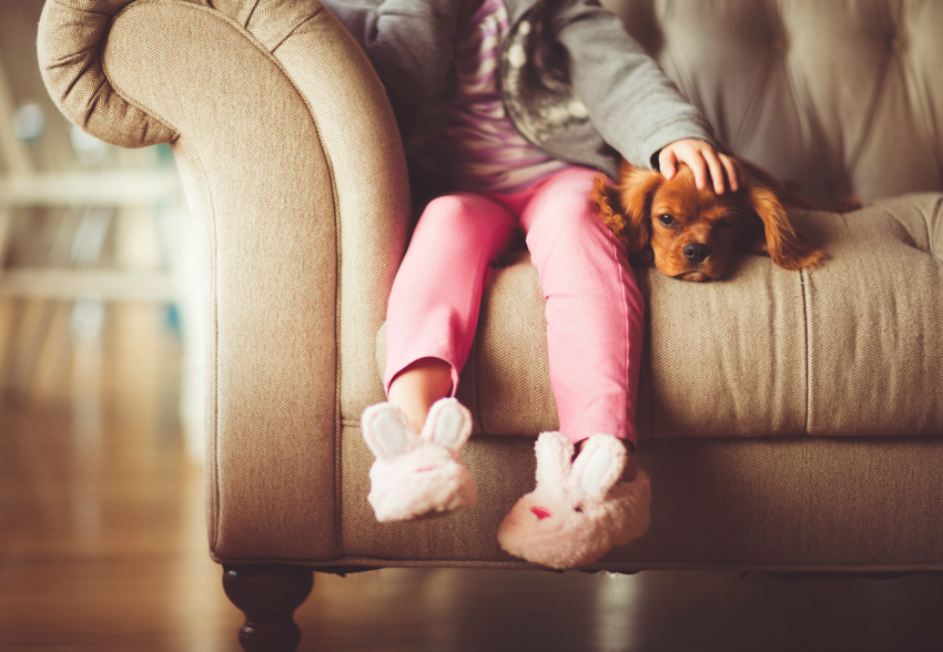 Choosing the Right Dog for your Family