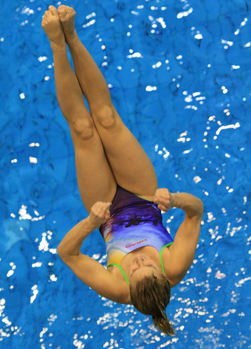 62nd international divers day, fina grand prix photo maik steinhagen