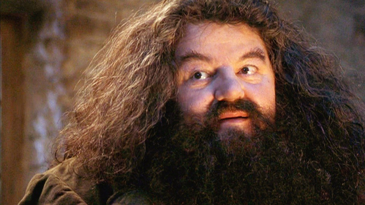 which harry potter character are you - hagrid