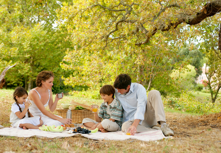 how to have the perfect picnic, picnic recipes, picnic spots in the uk